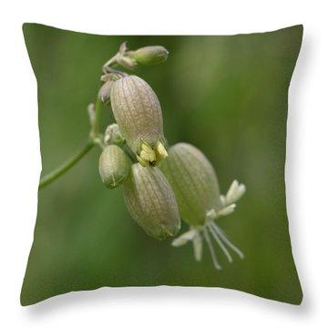 Blaasjeskruid Close-up Throw Pillow