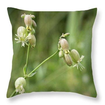 Blaasjeskruid Throw Pillow