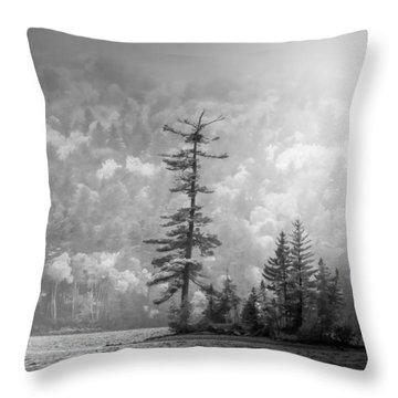 Throw Pillow featuring the photograph Black And White Moody Morning Moosehead Lake by Dan Sproul
