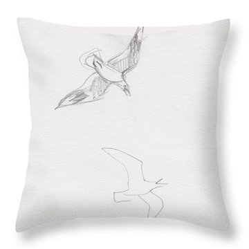 Black-billed Gulls Throw Pillow