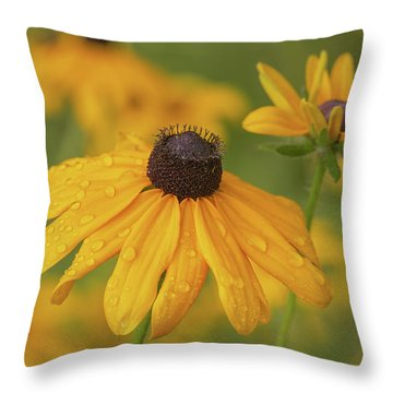 Throw Pillow featuring the photograph Black-eyed Susans by Dale Kincaid