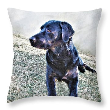 Black Labrador Retriever - Daisy Throw Pillow