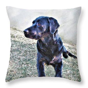 Black Labrador Retriever - Daisy Throw Pillow