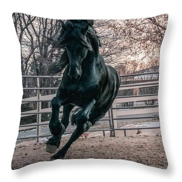 Black Stallion Cantering Throw Pillow