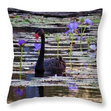 Black Swan On Lake Throw Pillow