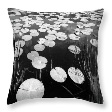Throw Pillow featuring the photograph Black Water by Debra and Dave Vanderlaan