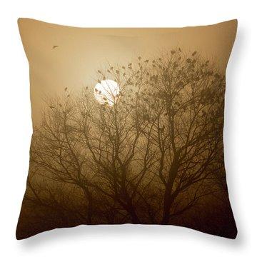 Blackbird Sunrise Throw Pillow
