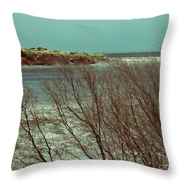 Throw Pillow featuring the photograph Blackwood Rivermouth, Augusta, Western Australia by Elaine Teague
