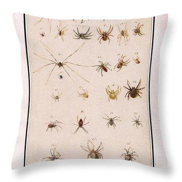 Blad Met Spinnen Throw Pillow