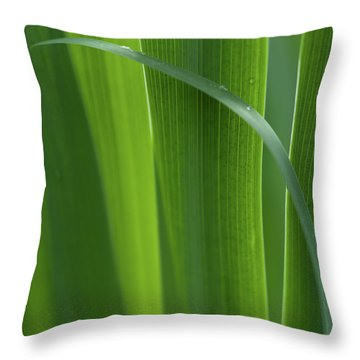 Throw Pillow featuring the photograph Blades 8587 by Mark Shoolery
