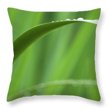 Blades 8594 Throw Pillow