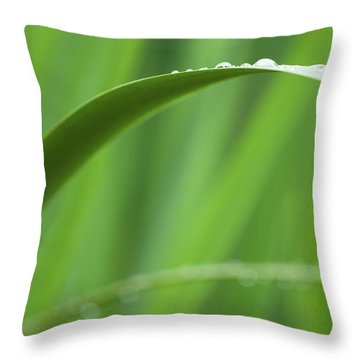Throw Pillow featuring the photograph Blades 8594 by Mark Shoolery