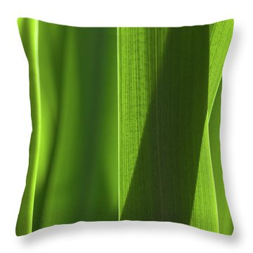 Throw Pillow featuring the photograph Blades 8851 by Mark Shoolery