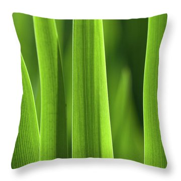 Throw Pillow featuring the photograph Blades 8857 by Mark Shoolery