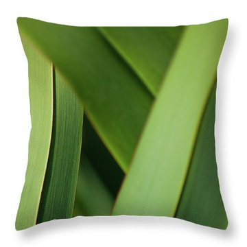 Throw Pillow featuring the photograph Blades I by Mark Shoolery
