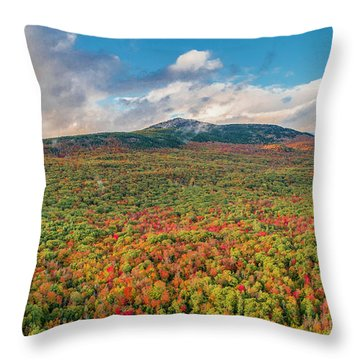Throw Pillow featuring the photograph Blanketed In Color by Michael Hughes