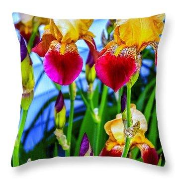 Blatant Iris Throw Pillow