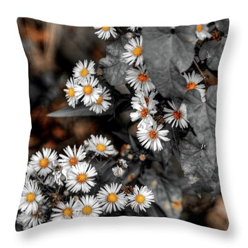 Blended Daisy's Throw Pillow