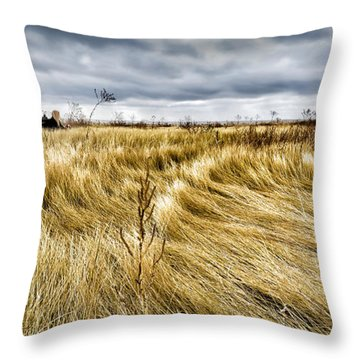 Throw Pillow featuring the photograph Blonde On Blonde by Carl Young