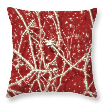 Throw Pillow featuring the photograph Blood Song 2 by Belinda Landtroop