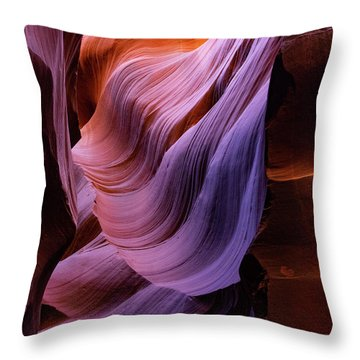 The Body's Earth 1 Throw Pillow