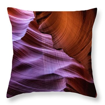 The Body's Earth 2 Throw Pillow