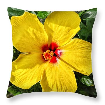 Bloom And Shine Throw Pillow