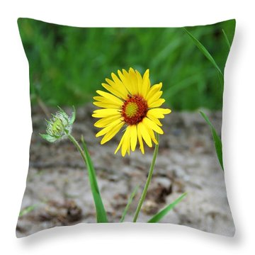 Bloom And Waiting Throw Pillow