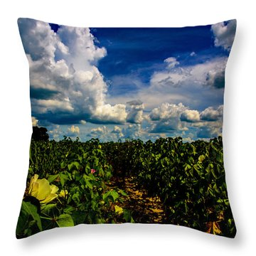Blooming Cotton  Throw Pillow