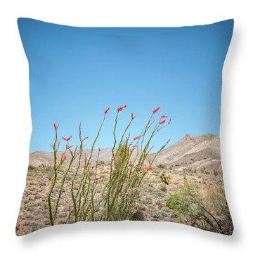 Blooming Ocotillo Throw Pillow