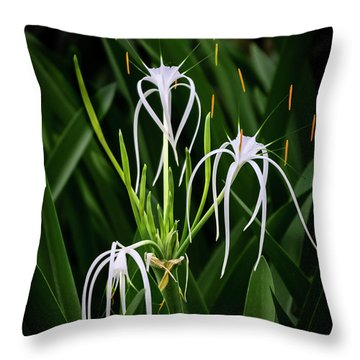 Blooming Poetry 4 Throw Pillow
