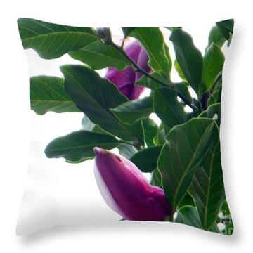 Blossoming Magnolias Throw Pillow