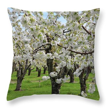 Blossoming Spring Day Throw Pillow