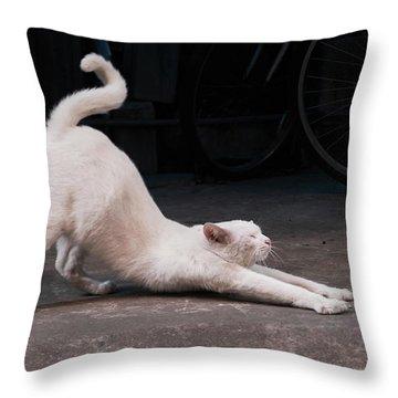 Blue 2 Throw Pillow