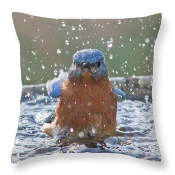 Blue Bird Bath Throw Pillow
