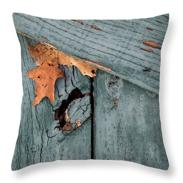 Blue Fence Throw Pillow