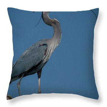 Blue Heron 2011-0322 Throw Pillow
