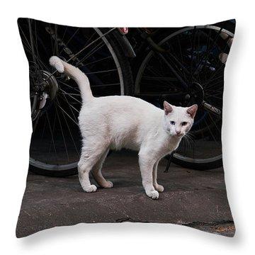 Blue IIi Throw Pillow
