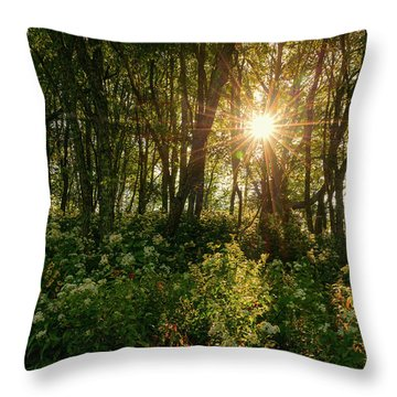 Blue Ridge Parkway - Last Of Summers Light, North Carolina Throw Pillow