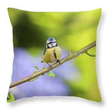 Blue Tit On A Rose Stem Throw Pillow
