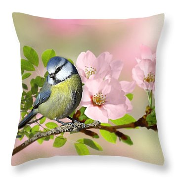 Blue Tit On Apple Blossom Throw Pillow