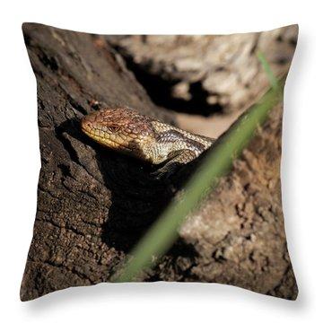 Blue Tongue Lizard Throw Pillow