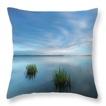 Blue Whirlpool Throw Pillow