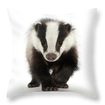 Bodger The Badger Throw Pillow