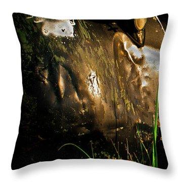 Bodie 14 Throw Pillow