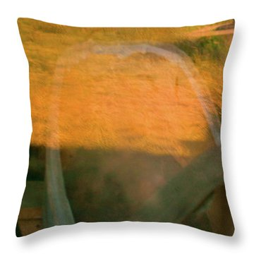 Bodie 4 Throw Pillow