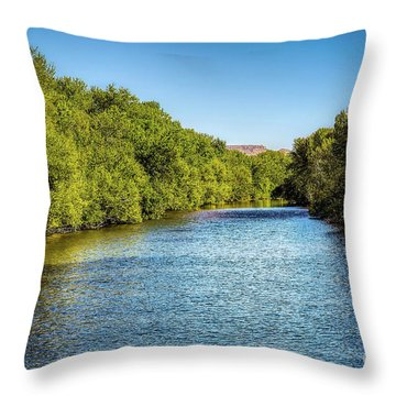 Throw Pillow featuring the photograph Boise River by Jon Burch Photography
