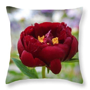 Bold Garnet Throw Pillow