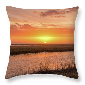 Throw Pillow featuring the photograph Bombay Hook Sunrise by Kristia Adams