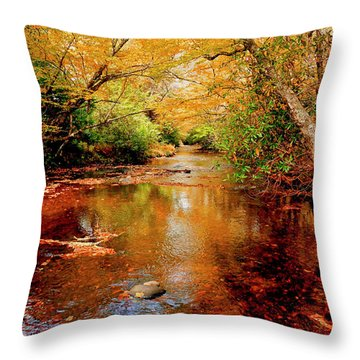 Boone Fork Stream Throw Pillow